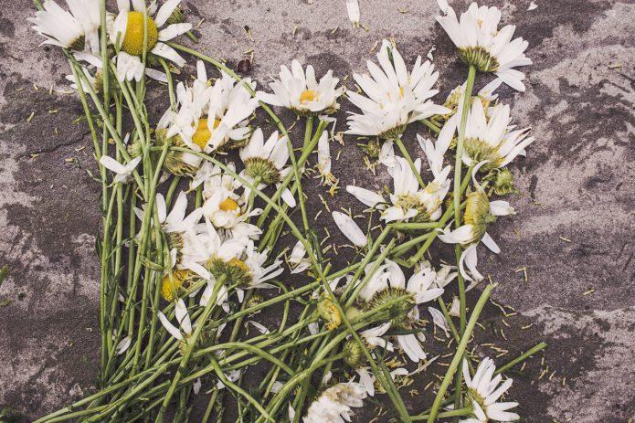 bloemen voor overlijden
